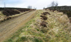 Country Diary : Track to the moors, Catton, Northumberland