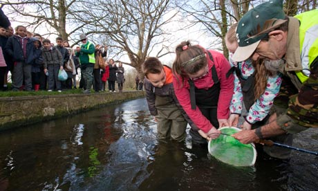 Trout from the Classroom to the River Wandle : primary school pupils releasing trouts