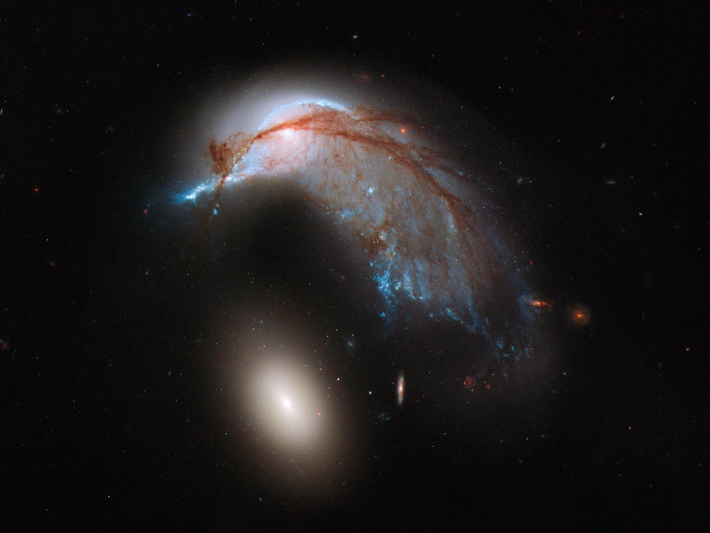 Hubble Space Telescope view of Arp 142 looking like a penguin guarding its egg