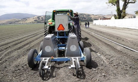 Robot in farming : Lettuce bot boxy robotic machine that can thin fields of lettuce