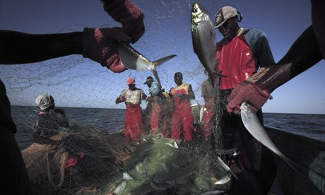 Canoe fishermen in the waters off of Dakar, Senegal