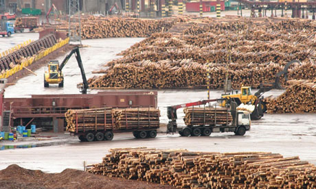 Outlooks Of Russian Timber Industry 64