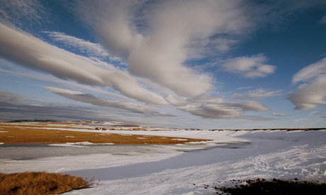 Arctic tundra in Siberia