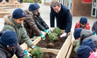 David Cameron helps schoolchildren in London plant box shrubs