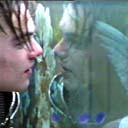 Romeo +Juliet (100 Moments)