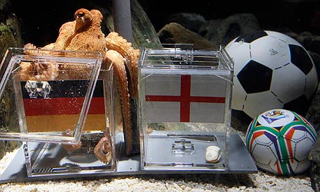 Paul, the so-called 'octopus oracle' predicts Germany's victory over England