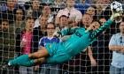 Edwin van der Sar manchester united