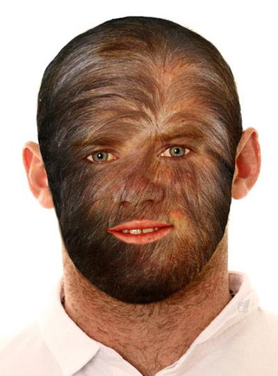 Wayne Rooney's hair: The Gallery: Wayne Rooney