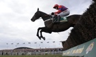 Sprinter Sacre, ridden by Barry Geraghty, takes the final fence on his way winning at Aintree
