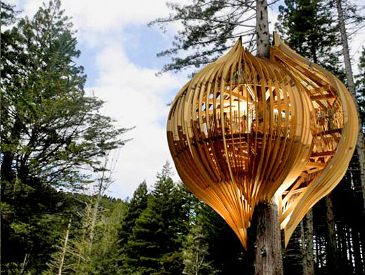 Tree House Restaurant