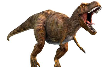 The Power of Tyrannosaurus Rex  burrunjorsramblesandbabbles