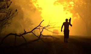 Bush fires rage out of control in Victoria, Australia