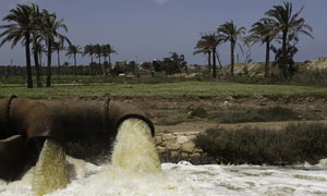 Polluted water from agricultural drainage is pumped into a canal in the Nile Delta