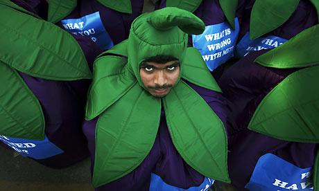 A Greenpeace activist dressed as a brinjal protests in Bangalore, India