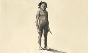An artist's impression of the newly discovered 'fourth human'