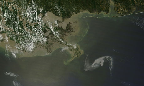 Gulf Coast BP Oil Spill