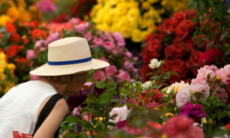 A woman smells the Roses at Hampton Court Palace Flower Show