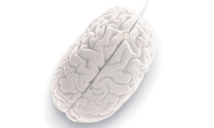 brainmouse