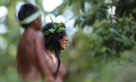 amazon rainforest ecuador