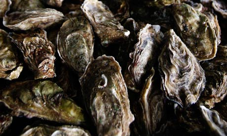 Health warning after norovirus found in 76% of British oysters