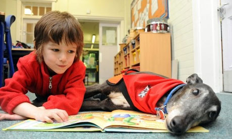 the dogs who listen to children reading education the