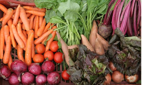 Organic fruit and vegetables produced on an organic farm in Kent