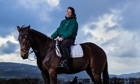 Experience: my horse sank in quicksand