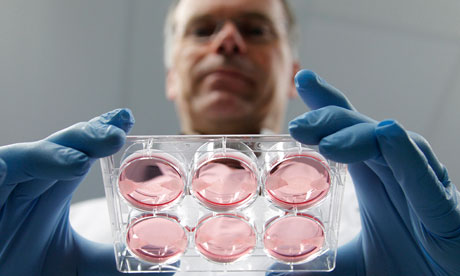 Dr Mark Post holds samples of artificial meat
