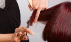 Hairdresser at work cutting customers hair