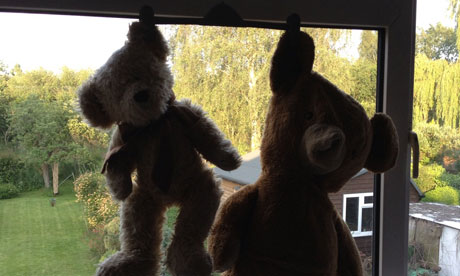 Teddies hanging by their ears