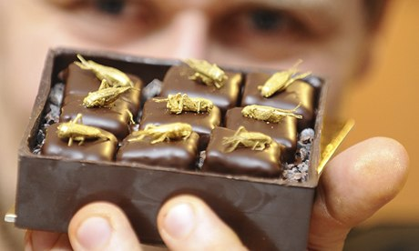 http://static.guim.co.uk/sys-images/Guardian/About/General/2013/10/14/1381754784415/French-chocolate-maker-Sy-009.jpg