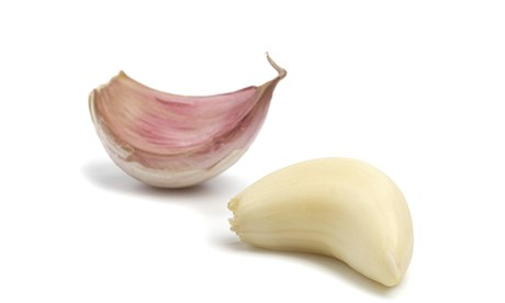 The best garlic varieties a guide life and style the guardian