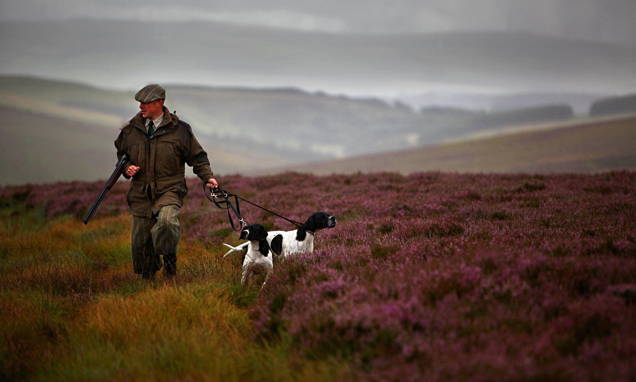 Peatlands Burn As Gamekeepers Create Landscape Fit For