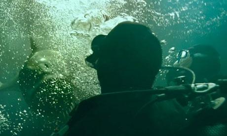 Dark Tide trailer 2