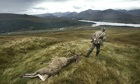 A stalker drags off a stag on the Black Mount estate, Argyll and Bute, Scottish Highlands