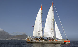 French yacht Tara sails in Table Bay, in