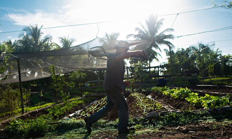 The farmer who's starting an organic revolution in Cuba