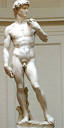 Full frontal of Michelangelo's David