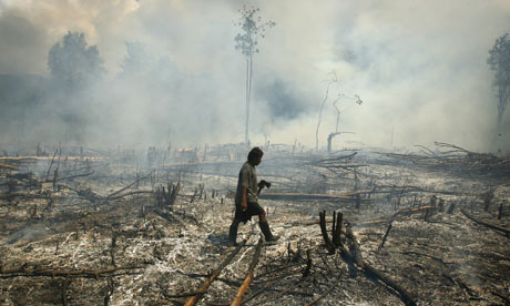 A villager walks through a burnt forest in Tojo