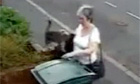Women dumps cat into wheelie bin