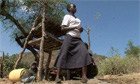 'I will never be cut': Kenyan girls fight back against genital mutilation