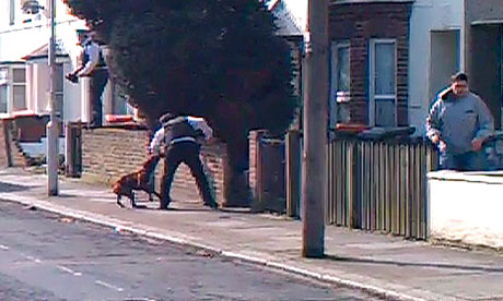 Dog attacking policeman