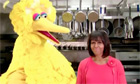 Michelle Obama and Sesame Street's Big Bird