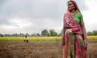 Rice farming in India: 'Now I produce enough food for my family' – video
