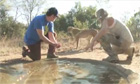 Adam Sandler pounced on by cheetah on safari - video