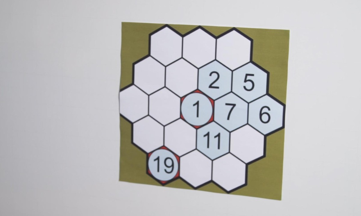 Can You Solve It Is Beehive Hidato The New Sudoku Mathematics The Guardian