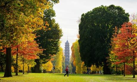 Autumn in Kew Gardens