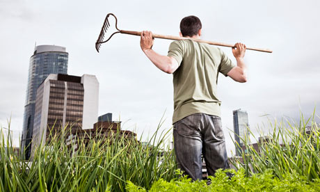 Urban gardening - man with rake