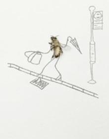 Capital Bee campaign video still