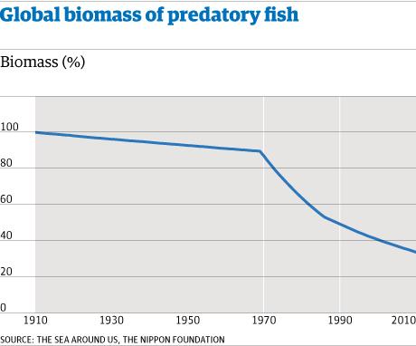 Global biomass of predatory fish